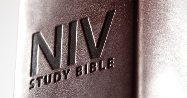 Shining the Light on the NIV
