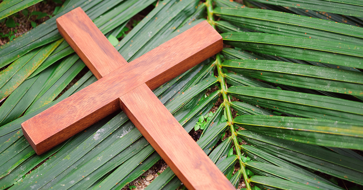 Celebrating Jesus Kingship This Palm Sunday Biblica The International Bible Society